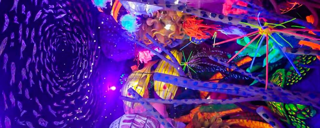 Illuminated Reef Tara Fahey